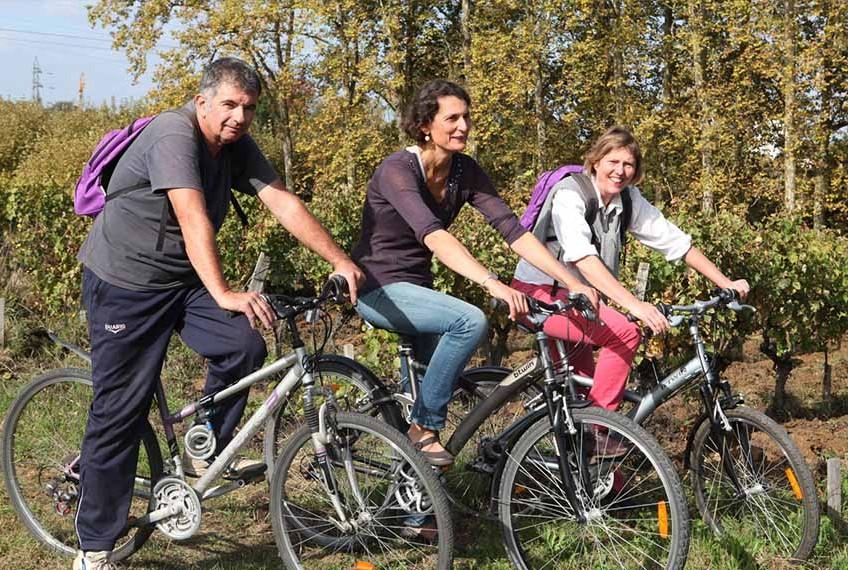 photo de randonneurs à vélo dans les vignes