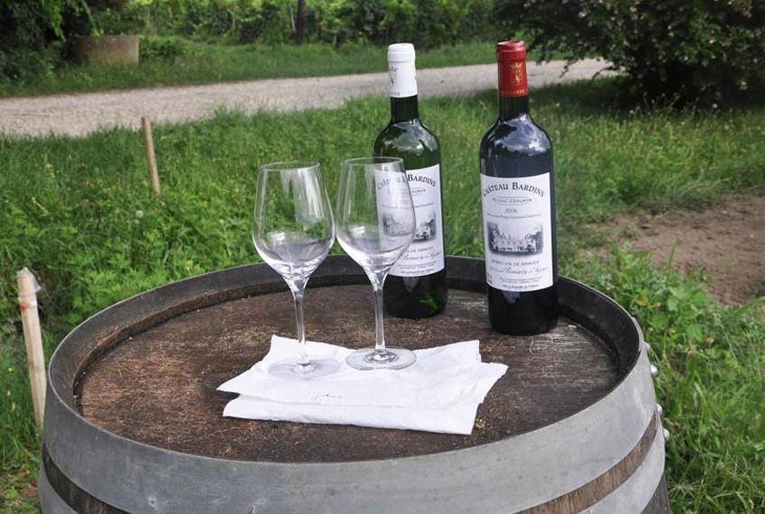 Bordeaux-randonnee pedestre et atelier degustation