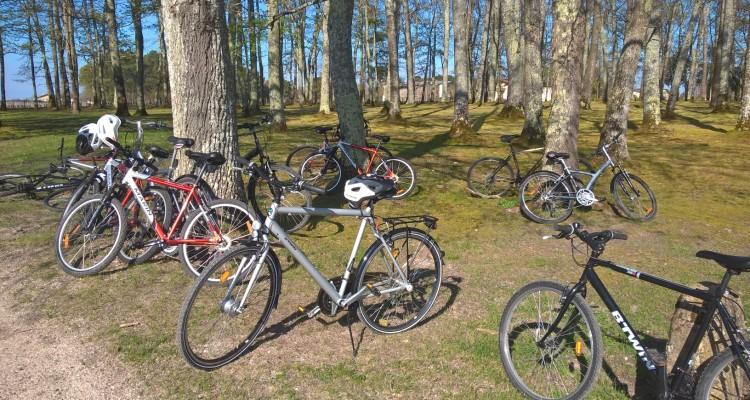 Bordeaux : visite et dégustation à vélo