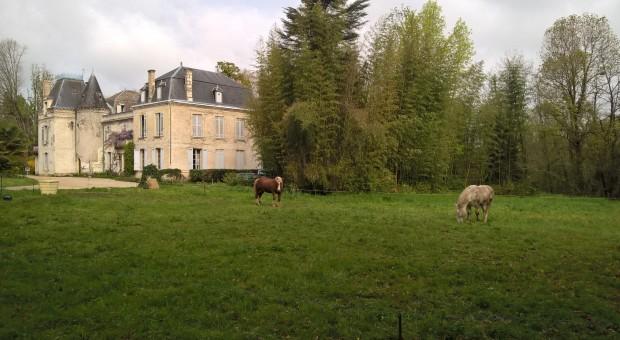 Château Bardins - labour à cheval