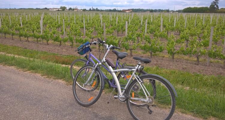 balade à vélo, vins de bordeaux