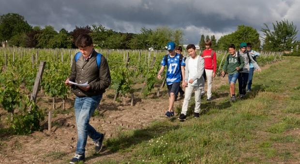 atelier pédagogique vins de bordeaux