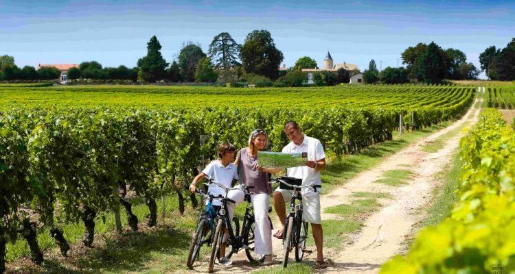 photo de balades à vélo dans les vignes de Pessac-Léognan