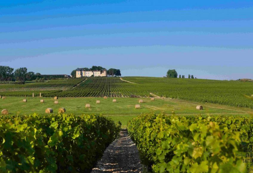 photo d'un chateau viticole