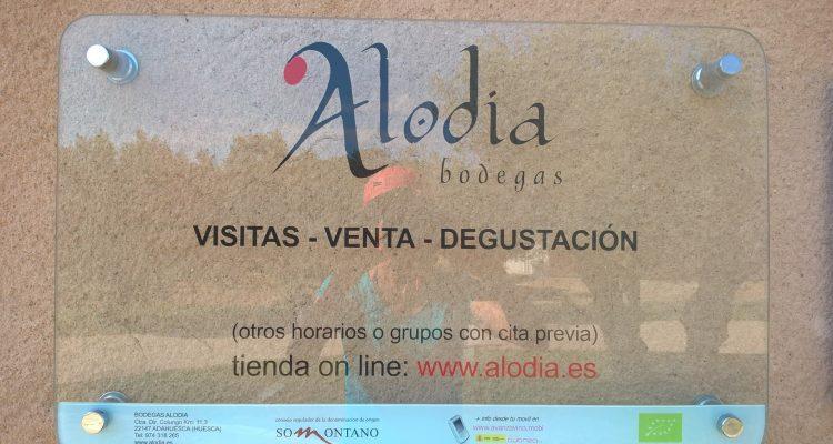 Image du logo de la bodega Alodia