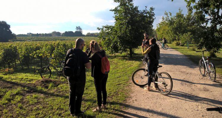 randonneurs à vélo