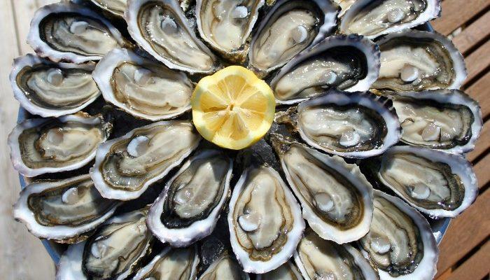 photo d'huîtres