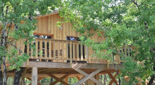 image de cabane dans les arbres