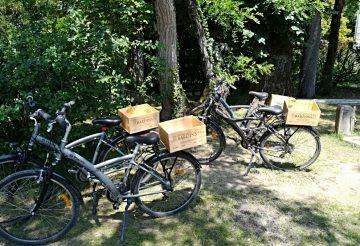 image de vélos