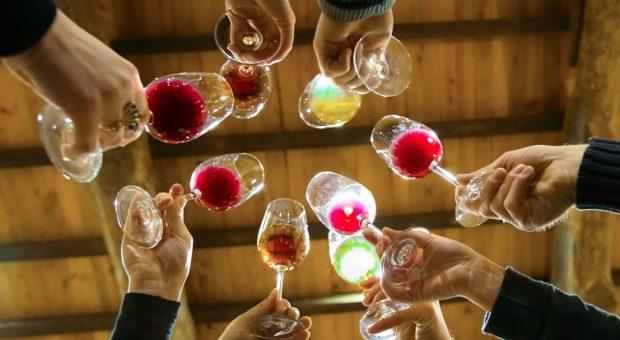 image des verres de dégustation de vins