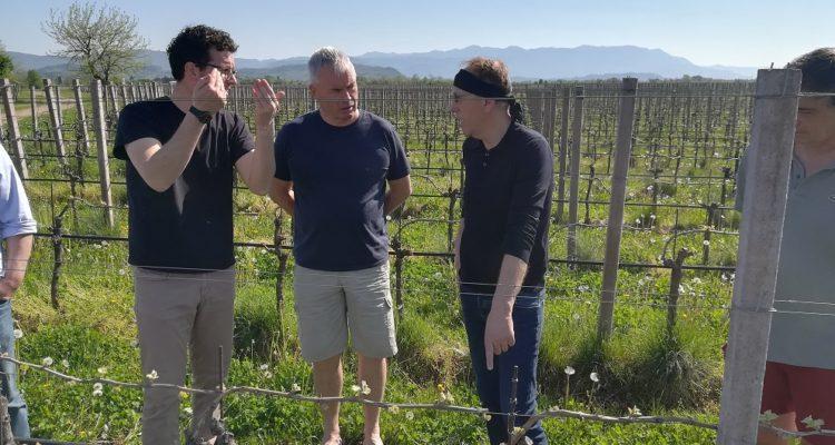 image de visite des vignes