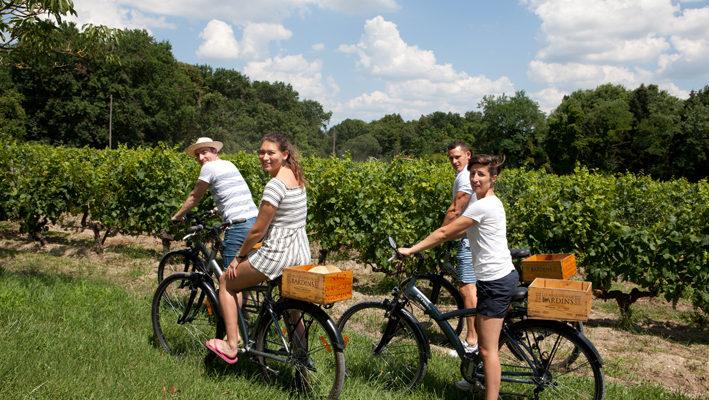 balade à vélo dans les vins de bordeaux