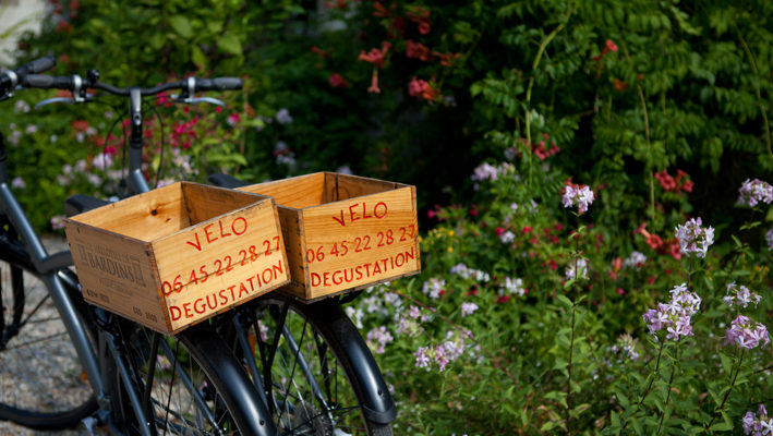 photo vélos et dégustation